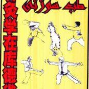 دانلود رایگان کتاب آموزش جامع طب سوزنی نوشته سید امیر ساعدی pdf